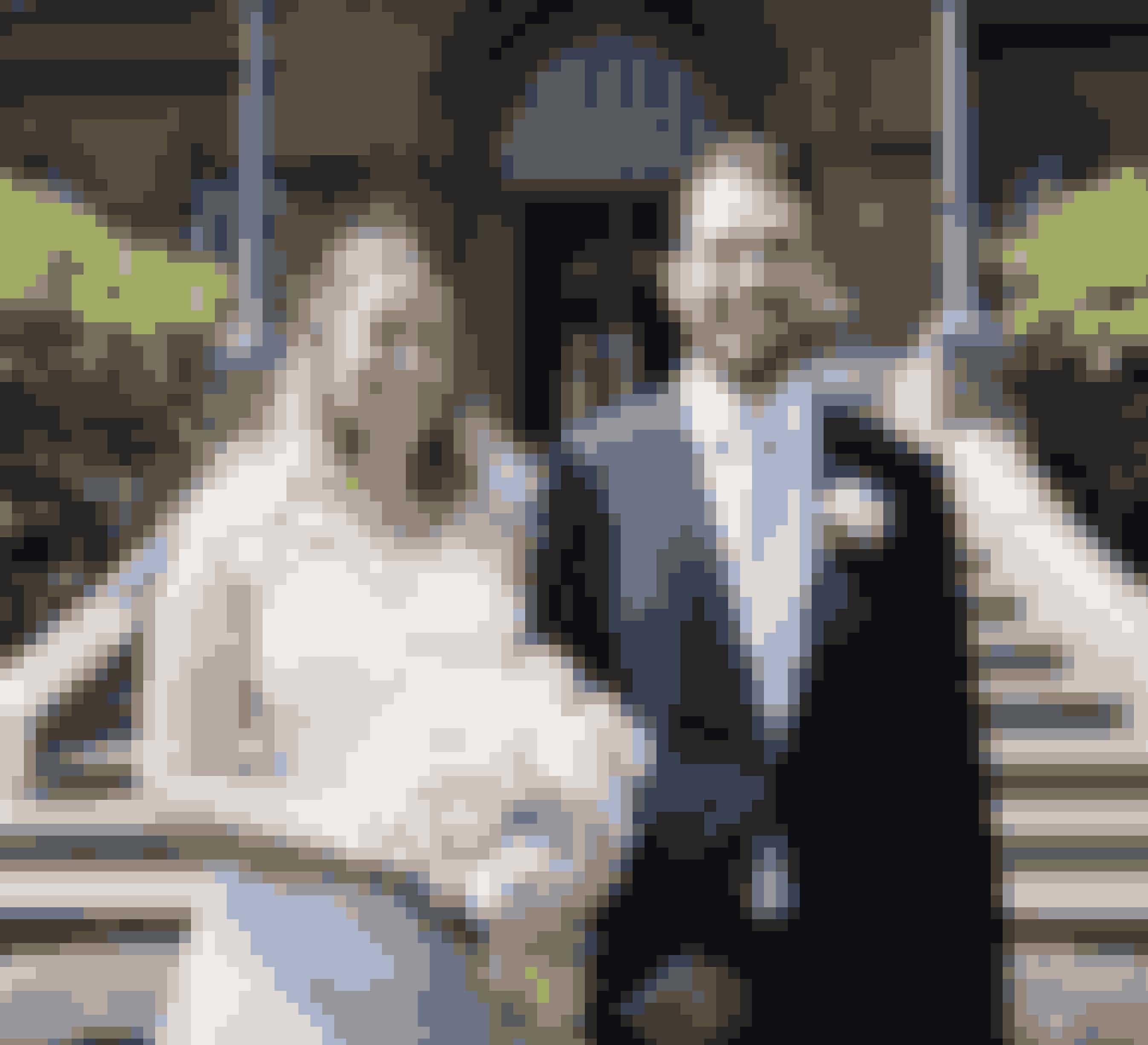 """Kathrine og Michael fra sidste sæson af """"Gift ved første blik"""" på deres bryllupsdag."""