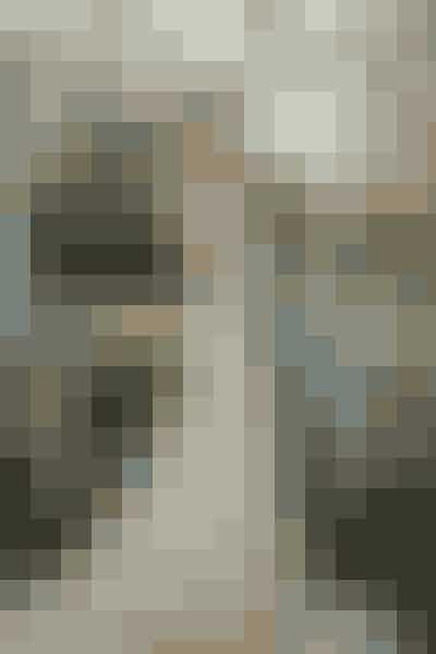Anastasia Steel – 'Fifty Shades - Freed'Ligesom Bellas kjole i 'Twilight', var Anastasia Steels brudekjole også meget omtalt inden den sidste film om Christian Grey og Anastasia Steels forhold havde premiere. Brudekjolen blev designet af Monique Lhuillier, og bestod primært af blonder og tyl, samt elegante detaljer ned lands ryggen.