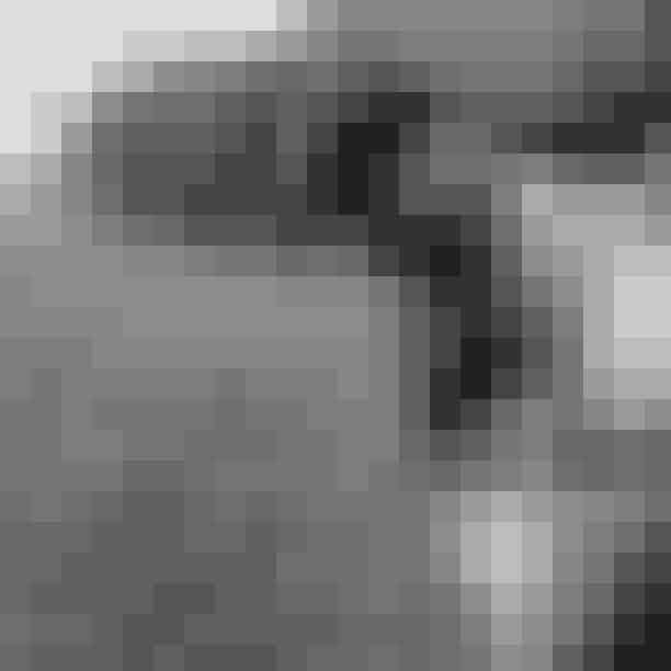 """Gigi Hadid og Zayn MalikSupermodel Gigi Hadid og One-Direction-stjernen Zayn Maik blev forældre til en lille pige, Khai, tilbage i september. Den 24. september delte Gigi på sin Instagram et billede af datterens og Zayns hånd med teksten """"Our girl joine dus earth-side this weekend and she's already changed our world. So in love 🥺💕"""""""
