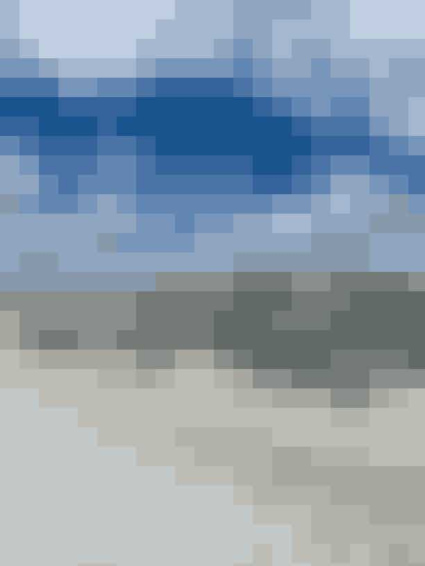 FAKSE KALKBRUDDer er god grund til at sætte GPS'en til syd for København, når du skal opleve, hvad dansk natur kan. En af dem er Fakse Kalkbrud; en gigantisk kalkudgravning, som faktisk er bunden af et 63 millioner år gammelt hav. Her svømmede hajer, krokodiller og blæksprutter rundt mellem smukke koraller. Geologiientusiaster kan selv hakke efter fossiler. For andre er det værd at komme for det visuelle - og for insta-billedet, naturligvis.