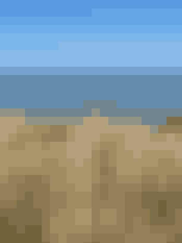 ORDRUP NÆSHele Odsherred er en registret naturpark - og ikke uden grund for naturen omkring lammefjorden og helt op til Sjællands Odde er helt unik. Trænger du til en badetur så kør 15 ud fra Dragsholm - helt ud på tippen af halvøen Ordrup Næs, hvor du kan finde bittesmå helt uspolerede badestrande og hoppe i vandet. Der er ikke meget strand, for sivmarkerne går helt ned til vandet - og det er unægteligt pænt!