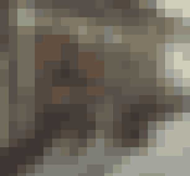 Franskmændene er ikke kendt for deres fastfoodtalenter, men ét sted i Paris er der en undtagelse til reglen – nemlig på den populære restaurant Frenchies lillebror, Frenchie To Go. Her serverer de bl.a. gourmethotdogs (prøv den!), lobster rolls og pulled pork-sandwiches, der enten kan tages med eller spises ved et af stedets få borde. Frenchie To Go, 9 Rue du Nil, 2. arr., Frenchietogo.com