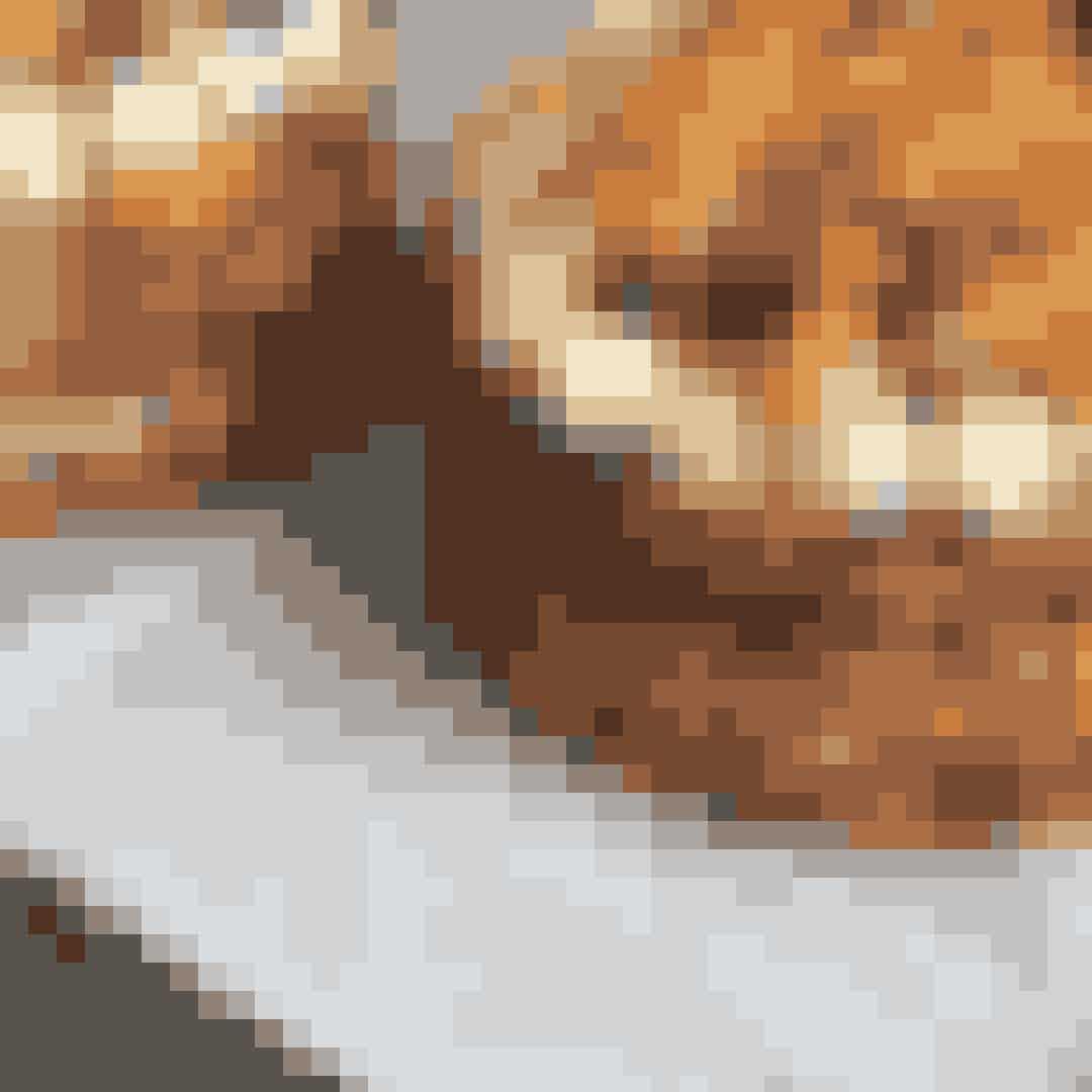 Apollo BarI de smukkeste opgivelser, et stenkast fra Nyhavn, finder du Kunsthal Charlottenborg og den hyggelige museumscafé, Apollo Bar, hvor der er fokus på grøntsager og økologi. Caféen støder ud til en hyggelig gård, hvor man både kan få sig en god kop kaffe eller spise et lækkert vegetarisk måltid, idet Apollo Bar både fungerer som en café og en restaurant.Hvor:Nyhavn 2, 1051 København KÅbningstider:Tirsdag – søndag 10.00-22.00