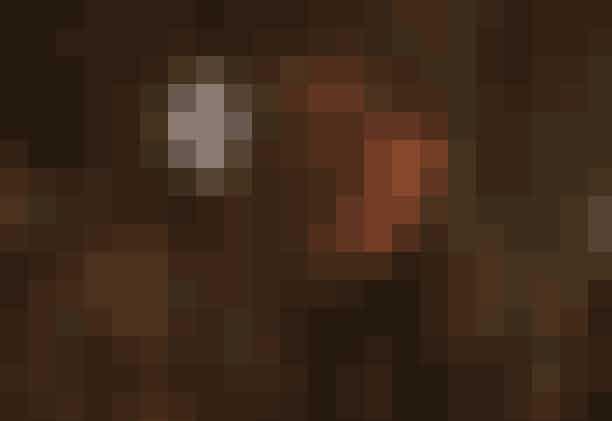 Stake Land (2011)I filmen 'Stake Land' har en vampyrepidemi har forvandlet Nordamerika til et sandt kaos. Teenagedrengen Martin slår følge med en erfaren vampyrjæger, og sammen sætter de kurs mod Canada for at nå det fredelige 'New Eden'. På rejsen gennem et postapokalyptisk USA tvinges de til at bekæmpe både blodtørstige vampyrer og et broderskab af religiøse fanatikere.