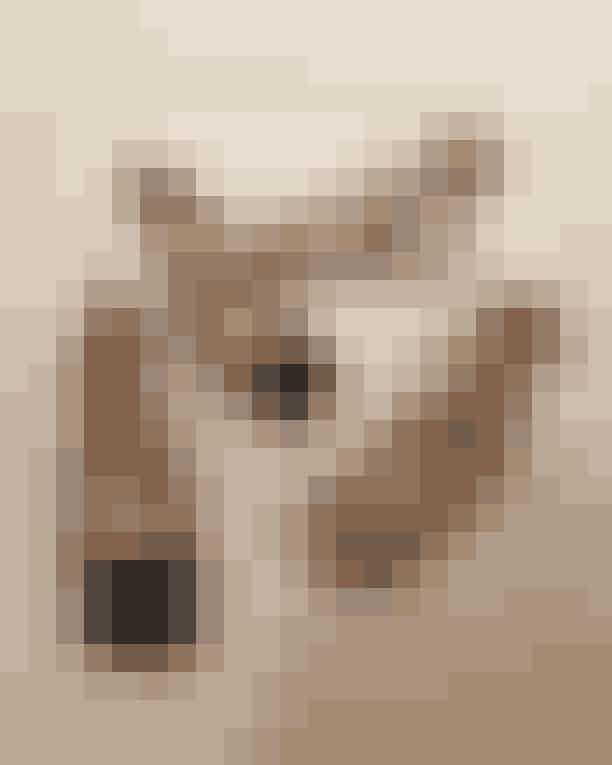Den firkantede snudeKunne man ønske sig mere?