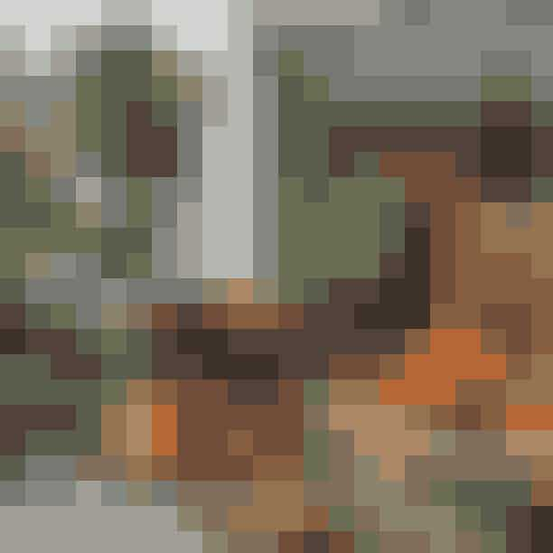Camilla Plums Blandede LandhandelGå en tur ned ad Nørrebros hyggeligste gade, Jægersborggade, hvor du blandt andet finder Camilla Plums Blandede Landhandel - her kan du handle økologisk grønt fra gastronomen Camilla Plums egen gård, Fuglebjerggård.
