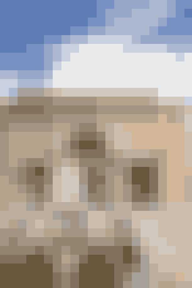 Dahn Vo på Statens Museum for Kunst.Dansk/vietnamesiske Dahn Vo udfolder poesi og politik i sin udstilling 'Take my Breath Away' på SMK. Udstillingen kredser om tematikker som migration, kulturhistorie og identitet.Udstillingen har netop været vist på Guggenheim i New York.Hvor: Statens Museum for Kunst,Sølvgade 48-50, 1307 København K.Hvornår: 30. august - 2. december.