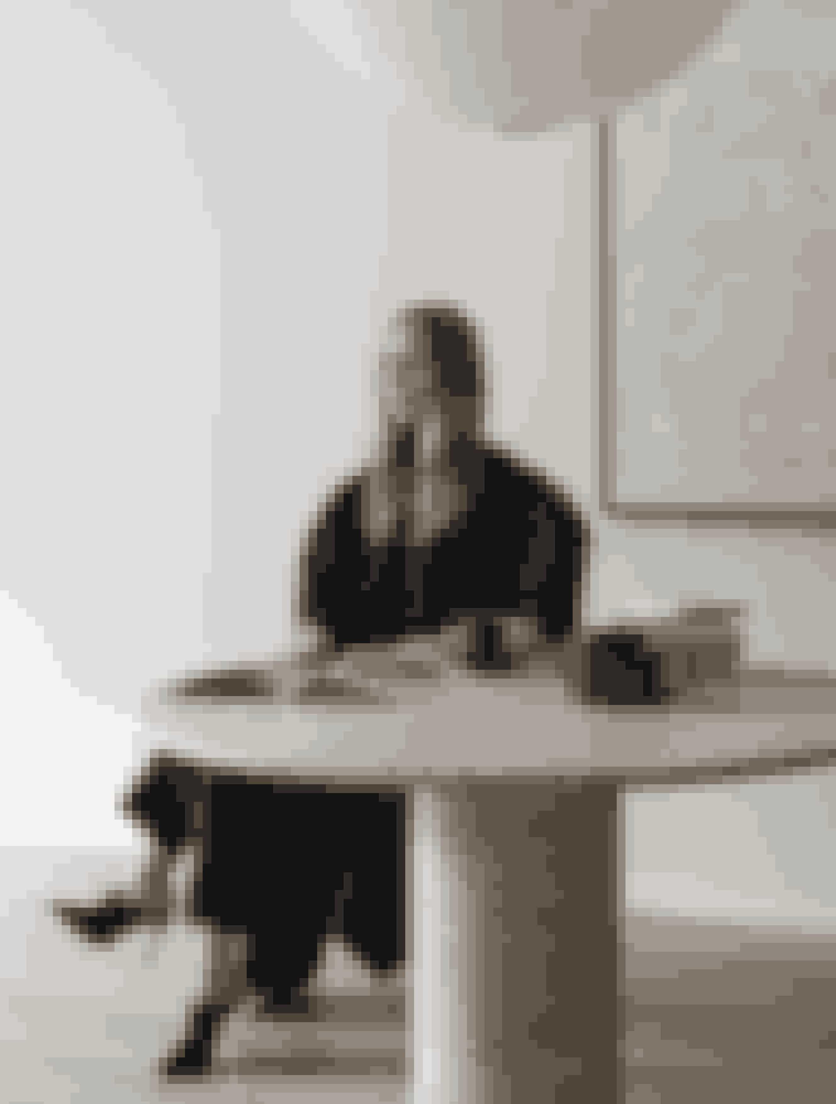 Carolina er i jakke og bukser fra Totême og sko fra Gianvito Rossi. Det smukke bord er købt hos hendes foretrukne antikvitetshandler i Stockholm, Sylvia Enget, og maleriet i baggrunden har hendes mand, Mattias Storm, malet.