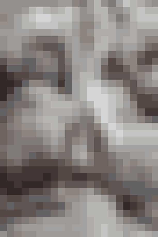 Vi inviterede den danske topmodel Josephine Skriver til det nordsjællandske ferieparadis Vejby Strand og stylede hende i det, vi mener er den ultimative drømme-sommergarderobe. Se Victorias's Secret-englen foreviget i de mest idylliske danske sommeromgivelser i de mest ypperlige styles fra tidens hotteste danske og internationale brands.