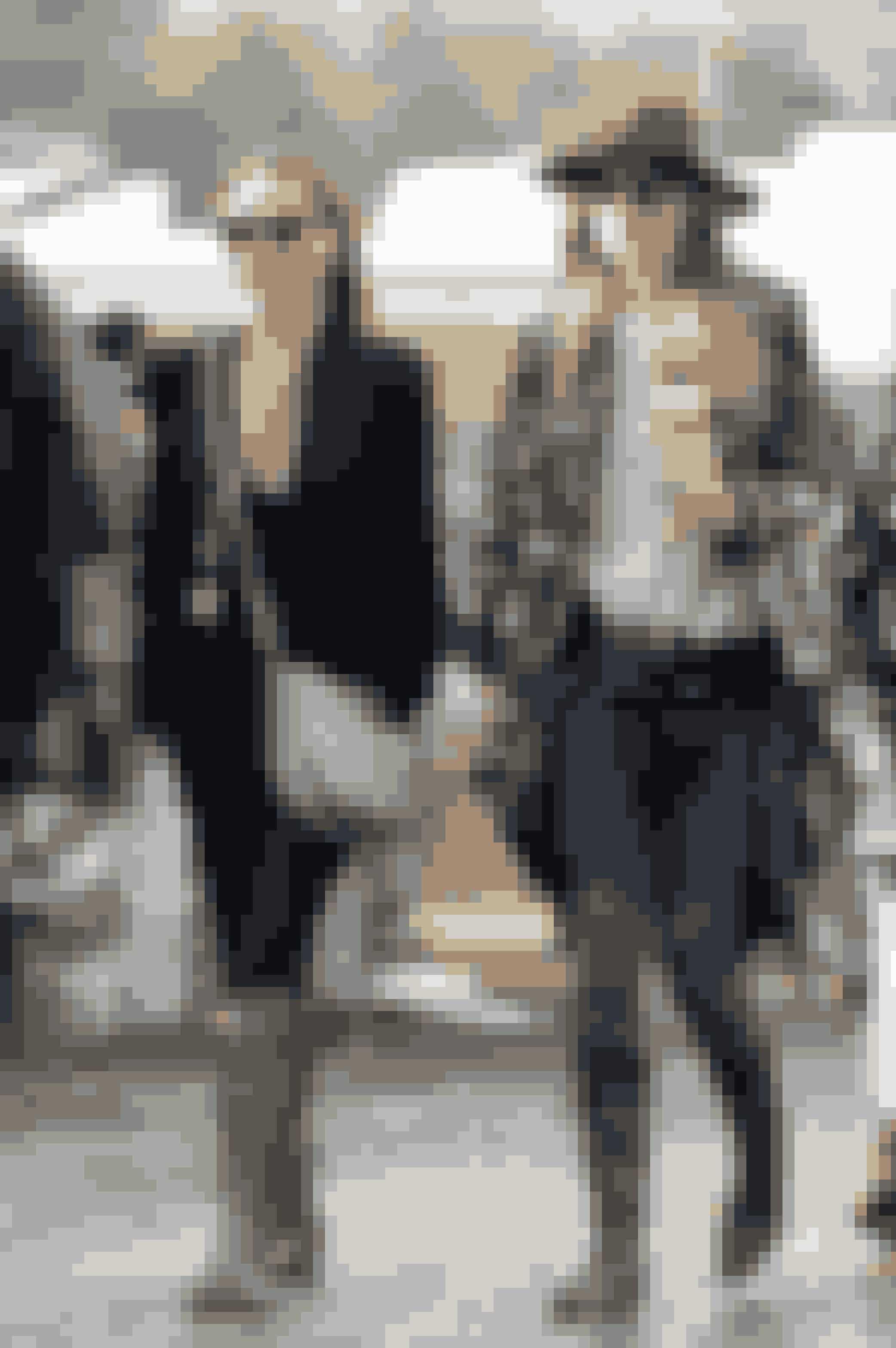 Stella McCartney og Dakota Johnson på Glastonbury Festival.
