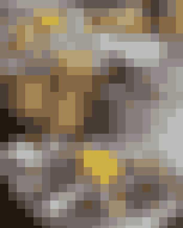 Granola Denne lille franske perle er et velkendt stamsted for mange af de lokale, og det forstår man godt. Fortovscaféen emmer af Paris og franske fristelser, og du får fluks lyst til at slå dig ned, læne dig tilbage og nyde menukortet, alt imens du iagttager de mange forbipasserende, der både kommer fra Vesterbro-siden og Frederiksberg-siden. En stemning og følelse, der i bedste Hemingway-stil giver dig lyst til at skrible et lille rejseessay eller to ned om det narrative Værnedamsvej, der er en fortælling i sig selv. Kom i god tid i weekenden, hvis du skal have plads i første række.Hvor: Værnedamsvej 5, 1819 Frederiksberg.