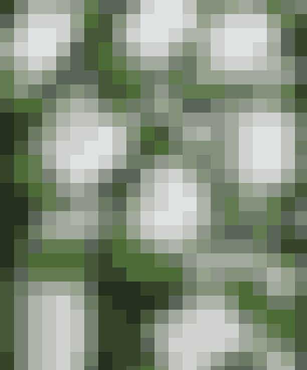 Måske er du efter julen blevet den lykkelige ejer af en juicer eller en fancy blender med 7 indstillinger og motorkapacitet som en Nissan Micra. Men hvis du ikke allerede har givet op, går der realistisk set nok ikke særlig mange dage, før du ikke magter at stå op klokken kvart i kvalme i buldermørke og blende grøntsager. Tillad mig at præsentere den grønne heks, Greenwitch, der hver søndag leverer en kasse med friske grøntsagssmoothies bestående af 200g grønt og maks 100g frugt pr. styk på dit dørtrin. Du sammensætter selv dit abonnement - altså hvor mange og hvilke varianter du ønsker, og så klarer Greenwitch det grønne blenderhelvede. God deal ikke? Psst... En levering søndag kan holde sig i køleskabet helt til om fredagen.Grøntsagssmoothies fra Greenwitch. 35 kr. pr. styk. Køb her.