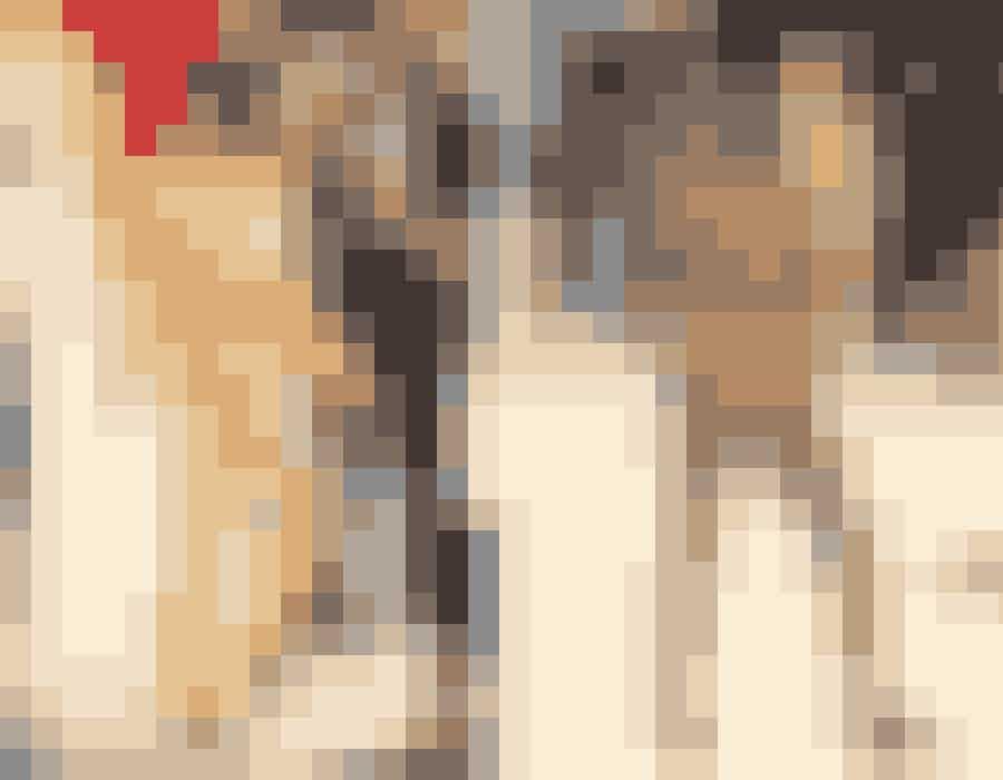Foruden den nærmest royale Versace guldkappe, som rapperen Lil Naz X ankom i, gemte der sig også en guldrustning fra top til tå og en tætsiddende bodysuit med sten og krystaller i guld, som på alle måde skinnede igennem på den røde løber.