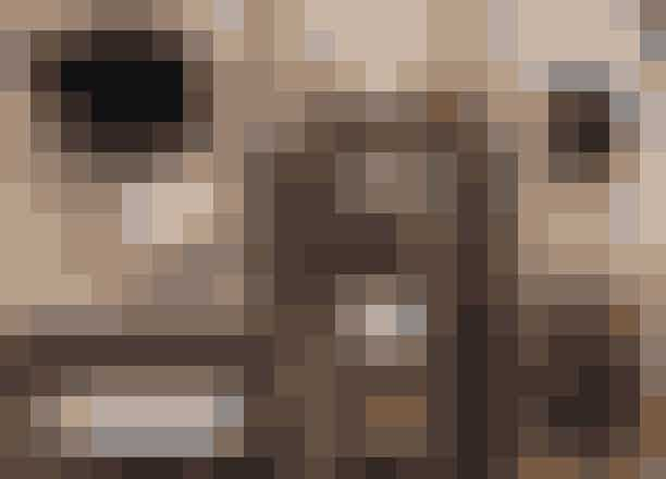 Et udvalg af Livs favoritter: Kameraet er fra Fuji, de nye øreringe er købt i Bottega Veneta, og favoritparfumen er Diors Bois d'argent, som kun kan købes i udvalgtebutikker. Tørbørsten er fra Karmameju, guasha-stenen bruges til blodcirkulation, og hårbørsten er fra Mason Pearson. Volumeproduktet fra Kevin Murphy har Liv brugt i otte år, da det giver den bedste struktur til håret.