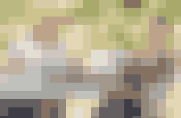 Hustle fra 2019Skuespillerinderne Anne Hathaway og Rebel Wilson er til at dø at grin over i Hustle fra 2019, hvor den danske Casper Christensen, der står bag serien og filmen Klovn, gør en sjov gæsteoptræden. Filmen skildrer svindel og bedrag, og her er det kvinderne, der har bukserne på og tyren ved hornene – det er det rene girl-power!