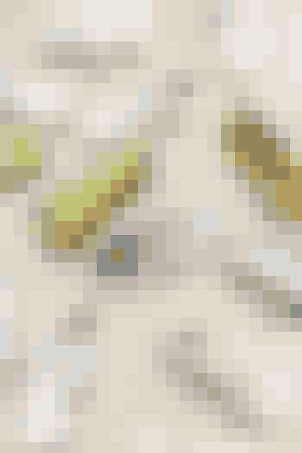 Frederikke Toftsø har tidligere arbejdet for Rezet Store, så hun har omkring 150 par gummisko på loftet. Mærkerne er b.la. New Balance, Adidas, Nike, Asics og Veja. Yndlingsmodellerne er New Balance 990, Stan Smith fra Adidas og Nike Air Max 97 Silverbullet.