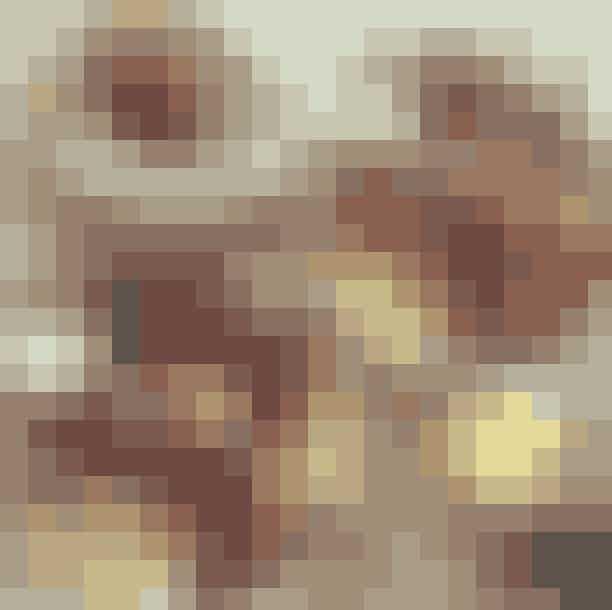 Ipsens & CoHvis du kan få en plads blandt alle Frederiksberg-borgerne, skal du slå dig ned på Ipsens & Co. Her får du Ipsens Morgenbræt med brød, ost, smør, syltetøj, blødkogt æg, croissant og øko skyr med toppings. Sådan en sag skal stå dig i 85 kroner.Hvor:Gl. Kongevej 108, 1850 Frederiksberg.