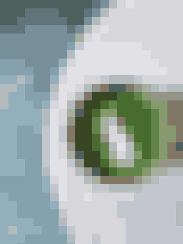 Moringa LatteMoringa er et kosttilskud, som kan købes i kapsler eller pulverform. Moringa er et træ, der vokser i Asien og Afrika og går endda under navnet 'Livets træ'. Pulveret laves af tørrede blade fra træet, og er rigt på aminosyrer, protein og A-, B- og C-vitamin. Moringa er kendt for at have flere fordele, men det er især et energifremmende superfood, som velegner sig godt til vegetarer grundet sit høje indhold af protein. Moringa er forholdsvist smagsneutralt, hvis det bruges i mindre mængder.Opskrift:Varm 2 dl. usødet plantemælk i enten en gryde eller en mælkeskummer. Rør 1 tsk. moringapulver ud i 1 dl. kogt vand (ca. 80 grader) indtil du har en stærk grøn koncentreret moringadrik. Blend plantemælk, moringa, én dadel og én knivspids vaniljepulver og server straks.