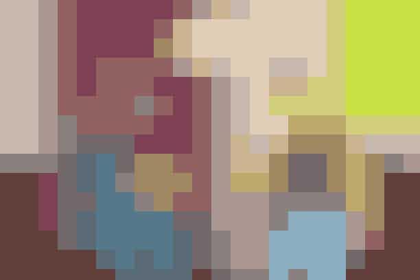 Tvillingen (21/05 – 21/06)Serie: BoJack HorsemanFordi du er: Humørsyg, mistroisk og sarkastisk