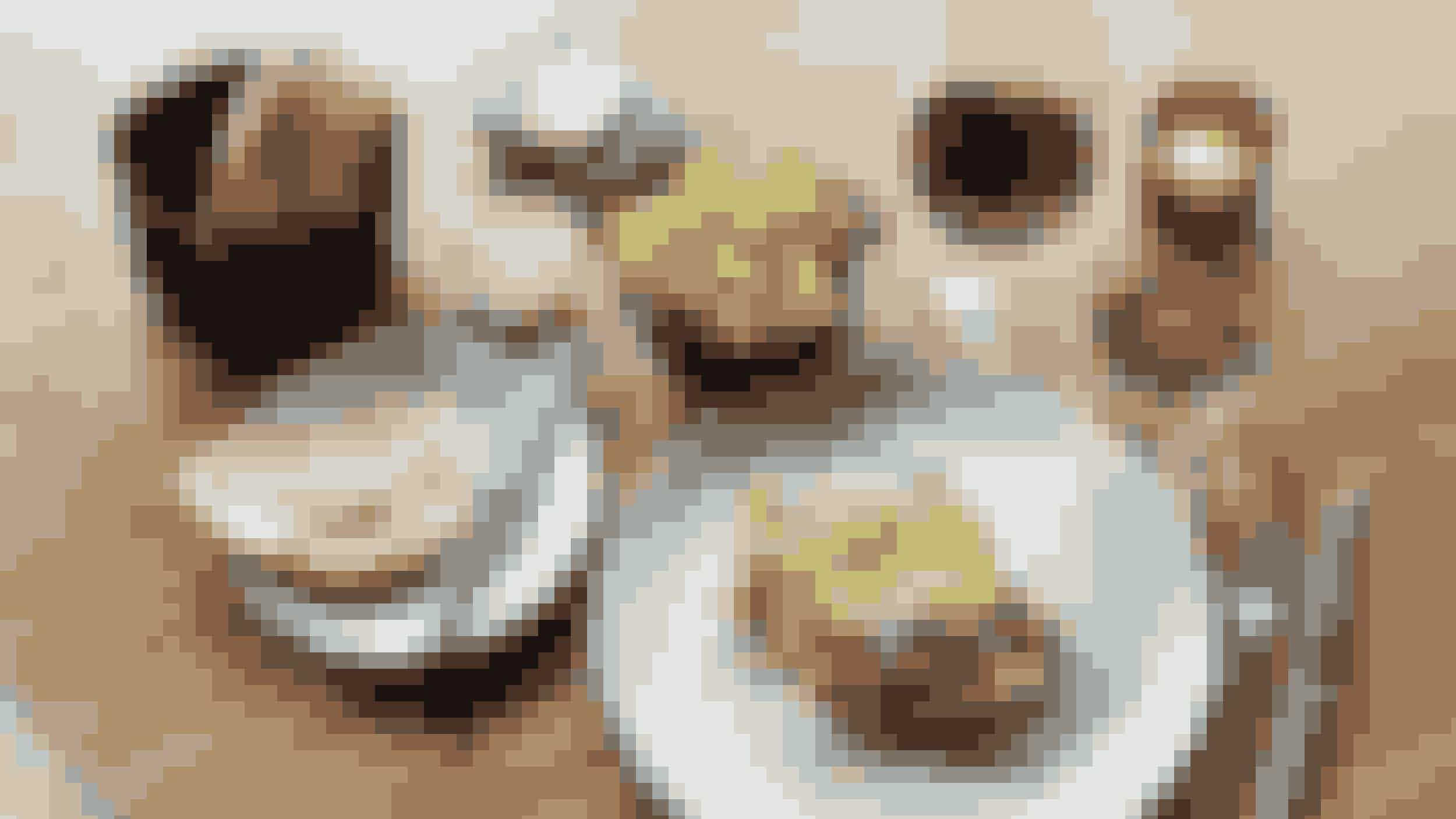 """FerdinandRestaurant Ferdinand holder normalt til på hotellet af samme navn i Aarhus, og er flere gange blevet hædret for deres velsmagende køkken. Derfor er Ferdinands madsted på NorthSide også uden tvivl et af de steder, vi vil anbefale at lægge vejen forbi på NorthSide 2017.Ferdinand vil servere alt fra ceviche og tartare de boeuf til den klassiske caesarsalat og søde danske jordbær til den søde tand. Alle deres retter til NorthSide kan bestilles som forretter, hovedretter eller til deling ved bordet. Så hvis du har lyst til et lidt finere setup end """"to-go"""" mad, er Ferdinand uden tvivl the place-to-be."""