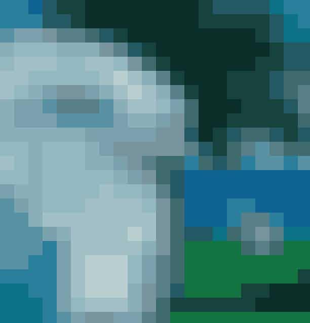 Solskinsøen Bornholm er altid en succes i sommermånederne, og vi guider dig til, hvordan du får mest muligt ud af dit besøg på den danske ø. På side 132 i det nye magasin, giver stilikon Pernille Teisbæk, stjernekok Frederik Bille Brahe og ELLEs chefredaktrice Cecilie Ingdal,deres bedste tips til skønne Bornholm.