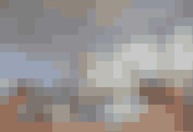 Tvillingesøstrene Helene Schjerbeck og Simone Bendix, der til sammen udgør Edition Poshette, har ladet sig påvirke af deres barndomsfortælling om 'Tistus, drengen med de grønne fingre', som er skrevet af den franske filosof, Maurice Druon. Med afsæt i Tistus eventyrlige univers har de skabt en sfærisk have i hvidt og grønt klippet og foldet af gamle bøger, kort og papir parret med Royal Copenhagens berømte Flora Danica stel og det moderne Hvid Elements.