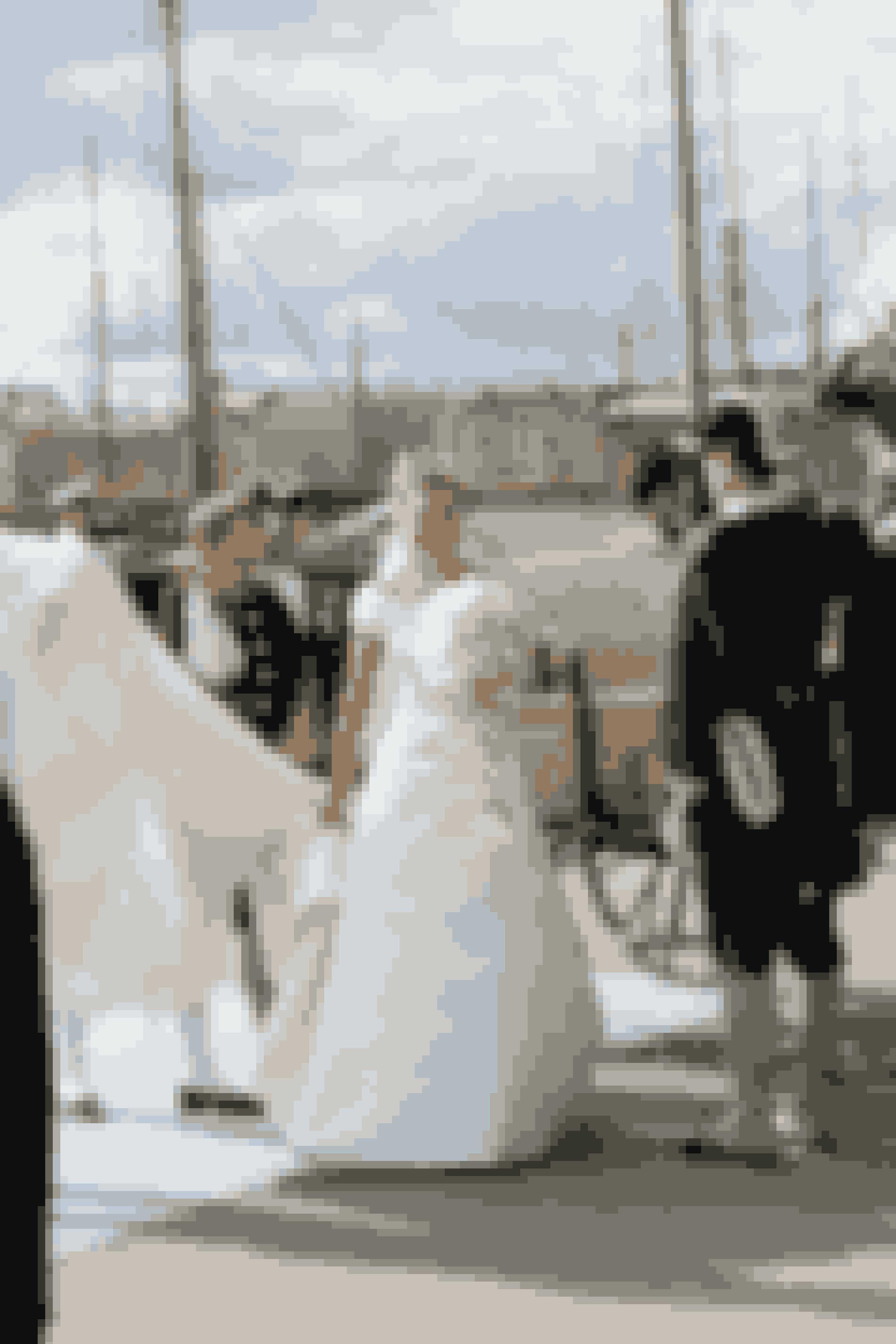 Kronprinsesse Victoria af Sverige iført kjole designet af Pär Engsheden ved sit bryllup med prins Daniel, 2010.