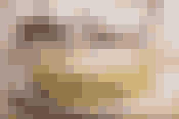 Den klassiske pandekageopskrift (4 pers.)   200 g hvedemel  5 dl mælk  4 æg  Ca. 2 dl øl, danskvand el. bare postevand  2 tsk. stødt kardemomme  1/8 tsk. salt  Ca 30 g smør til stegning   Drys Flormelis og evt. syltetøj   Kom hvedemelet i en skål. Rør mælken i lidt ad gangen med piskeris eller elmikser. Det er vigtigt, at alle klumper røres godt ud. Når det er lindt, piskes æggene i sammen med kardemomme og salt, og til sidst justeres konsistensen med øl eller vand. Smørret smeltes på en mellemstor pande og kommes flydende i en lille skål. Steg tynde pandekager ca. 2-3 min. på hver side i ganske lidt smør og server med sigtet flormelis og evt. lidt syltetøj.   Opskrift: Helle Brønnum Carlsen og Kristina Miechels & Foto: Jette M. Vesterager
