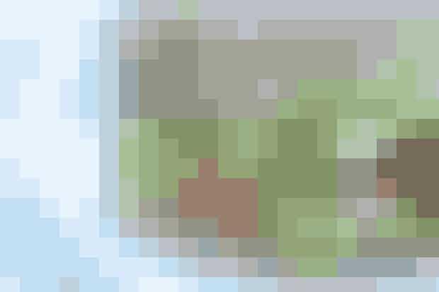"""Smagfuldt alternativ til bollen  (1 pers.)  1 æg 1 dl minimælk ¾ dl hvedemel ¼ dl grahamsmel ½ tsk. basilikum Lidt salt 10 g smør 50 g icebergsalat 10 g lucernespirer 1 tomat ¼ avocado ½ appelsin 50 g skinkestrimler   Sådan gør du Pisk æg, minimælk, hvedemel, grahamsmel og basilikum sammen til en dej. Smag til med salt. Tag en lille pande, ca. 20 cm i diameter, bag to tykke pandekager i smørret og lad dem afkøle. Læg den ene pandekage på en tallerken. Pynt med fintsnittet icebergsalat, lucernespirer, tomatskiver, avocado i skiver, appelsinskiver og skinkestrimler. Læg den anden pandekage ovenpå og server. I denne ret regnes pandekagerne som tilbehør. Ved """"Mest tilbehør"""" suppleres med 50 g flute.   SAMMENSÆT EFTER DIN SMAG (til 1 pers.)                                          Mest grønt             Mest tilbehør             Mest protein                               Svinekød             50 g             30 g             100 g                               Grønsager             160 g             90 g             90 g                                            Kcal/ kJ                          550/2301             600/2510             595/2491                 Foto: Catrine Mannerup"""