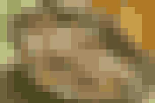 Pandekageopskriften over dem alle  (4 pers.)   8 dessertpandekager  100 g sukker  50 g smør  50 g grofthakkede mandler  1 spsk. revet skal af usprøjtet appelsin  ½ spsk. revet skal af usprøjtet citron  1 spsk. friskhakket ingefær  Den udhulede vaniljestang  3 dl appelsinsaft  Saft af 1 citron  ½ dl Grand Marnier  ½ dl cognac   Smelt sukkeret gyldenbrunt på en pande. Tilsæt appelsin- og citronskal, ingefær og mandler. Tilsæt smør og lad det smelte. Hæld citron- og appelsinsaft ved og lad det simre et par min. Fold pandekagerne i kvarte, læg dem ned i saucen og varm dem igennem. Hæld Grand Marnier og cognac ved, flyt væk fra emhætten og sæt en tændstik til.   Madopskrift: Anne Skovgaard-Petersen & Foto: Jette M. Vesterager