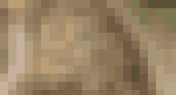 Prøv en superlækker lavkarbo-mysli til morgenmad   Ingredienser: 500 g knust boghvede (købes i helsekostbutikker)  3 dl kokos  2 dl solsikkefrø  1½ dl hørfrø  2 dl græskarkerner  200 g blandede nødder (f.eks. hasselnødder og mandler)  ½ dl rapsolie  1 dl vand  ½ dl flydende honning  1 spsk. kanel   Sådan gør du: Læg boghveden i blød i en skål vand og lad den stå natten over. Hæld vandet fra og skyl boghveden. Lad den tørre nogle timer.   Sæt ovnen på 200°. Hak nødderne groft. Bland boghvede, kokos, frø og nødder i en skål og hæld blandingen ud på en bageplade.   Bland olie, honning og vand i en anden skål. Hæld derefter blandingen over myslien. Rør rundt og strø kanel over.   Lad myslien få ca. 20 min. i ovnen – eller til myslien har fået farve. Rør rundt i blandingen med jævne mellemrum, så den ikke brænder på.  TIP ½ dl er passende til en gang morgenmad. Myslien serveres med yoghurt naturel og nydes allerbedst som morgenmad.   Lavkarbo-opskrift: Ulrika Davidsson
