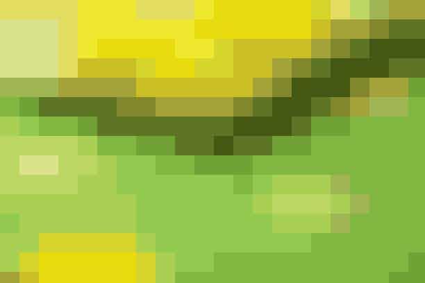 Den ternede dug med de applikerede, gule blomster er fin som påskedug, men kan også sagtens bruges senere som sommerdug ude og inde Find opskriften her...