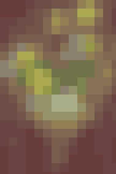 Et fintpileflethjerte byder velkommen med sit dekorative fyld af tete-a-tete minipåskeliljer, vibeæg, hvid perlehyacint, gæslinger og små dekoæg. Blomsterne beholder deres løg og knolde på, så holder de længe i det fri