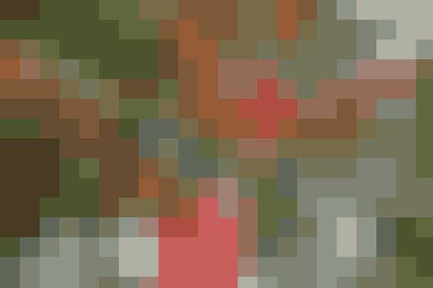 Et regnbuefarvet træ, der er blevet pyntet med hæklede striber - læs mere her