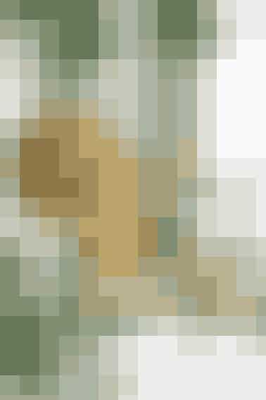 """Kuglen består af en lang, strikket snor limet på en flamingokugle, mens stjernen er hæklet omkring ståltråd     Materialer: """"Glamour"""" (70% viskose/30% lurex/50 g = 190 meter): guld nr. 2000: 1 ngl til kugle + rester til stjernen. 2 strømpep nr. 2½. + hæklenål nr. 2½. Til kugle: Flamingokugle (6 cm) og decoupagelim. Til stjerne: Kraftig ståltråd, tang og tape.  Garn fra Hjertegarn.    KUGLE MED GULDSNOR  Diameter: 7 cm.   Snor: Strik rundt på 2 strømpep: Slå 4 m op ✩skub m hen i modsat ende af p, tag p i venstre hånd, før garnet stramt bag om m (uden at vende arb) og strik alle m r. Gtg fra ✩. Strik til snoren måler ca. 250 cm (vent med at lukke af). Dan løkke til ophæng af beg-garnenden og bind knude tæt ved snoren, smør lim på halvdelen af kuglen og vikl snoren tæt om kuglen, hold den på plads undervejs med knappenåle. Smør lim på sidste halvdel, og forts med at fæstne snoren. Tilpas snorens længde, så den slutter præcist. Luk m af, klip enden 1 cm lang og lim den fast.    HÆKLET GULDSTJERNE  Mål: 11 x 11 cm.   Stjerne: Buk ståltråden til 2 ens trekanter. Stød enderne sammen, og klip overskydende ståltråd af. Hold enderne sammen med tape. Hækl fm hele vejen rundt om den ene trekant sådan: Hækl i det ene hjørne, og skub så det hæklede bagud til trekanten er fyldt. Bryd garnet og hæft ender. Hækl på samme måde på næste trekant og bryd garnet. Flet trekanterne ind i hinanden, og hæft den ene ende, samtidig med at der sys gennem begge trekanter i samlingerne. Form et ophæng af den anden garnende, før den hæftes.   Strikke- og hækleopskrift: Ruth Møller/Foto: Jette M. Vesterager"""