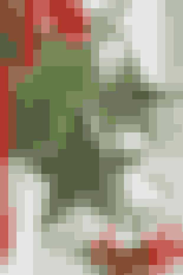 Kig i restekassen efter stofrester og knapper, der kan forvandles til de fine pyntestjerner     TERNEDE STJERNER  Mål: 12 x 12 cm.  Materialer: Ternede stofrester, knapper, tråd og polyestervat.   Arbejdsgang: Tegn stjernemønstret op (det samme som til nissestjernen), og klip efter dette 2 stk. ternet stof med 5 mm sømrum til hver stjerne. Sy delene sammen 2 og 2, ret mod ret, men lad 2 cm stå fri. Klip hak i buerne og vend retten ud. Fyld vat i stjernen og sy åbningen til. Sy en knap fast på hver side af hjertet samtidig ved at sy igennem stjernen. Sy et stykke garn i til ophæng.   Syopskrift: Ruth Møller/Foto: Jette M. Vesterager