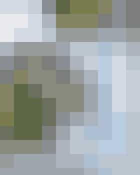 Foto: slankedoktor.dk