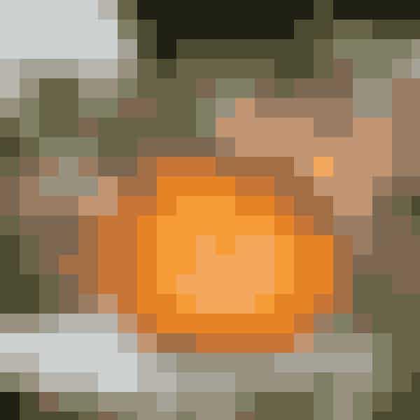 Udskårne græskar erhalloween-festernesmaskotfigur og lyser iden skønneste orangefarve af alle. Her titteren fin, helt mørktrifolium, Dark Debbie,fra Gartneriet Råhøj udunder pandebrasken pågræskarret.TIP:Hvis man pensler sit udskårnehalloween-græskar indenimed Atamon, holder detlængere. Stil det gerne påfortrappen eller terrassenmed fyrfadslys i og tænddem, når detbliver mørkt.Foto: Henrik Bjerg, Carina Krüger m.fl.