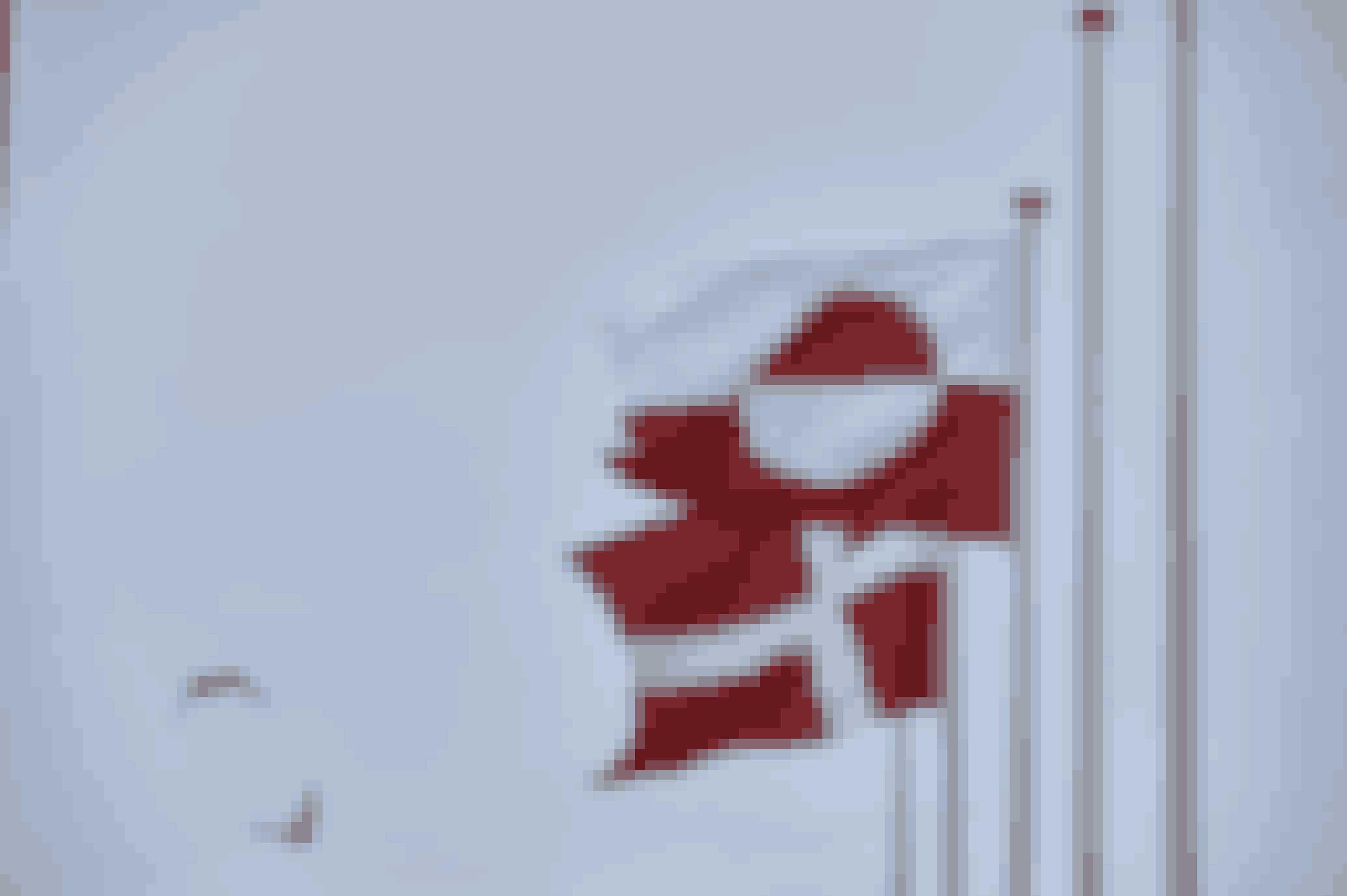 Grønland og Danmark er bundet sammen af lang tids historie.