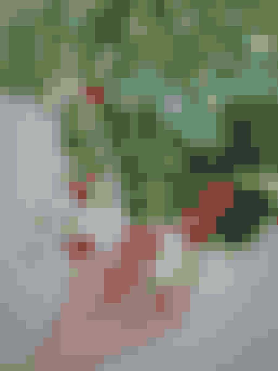 Jordbær i ampler er smukke og nemme at plukke, samtidig kan de være helt i fred for dræbersneglene. Eneste ulempe er, at de er lidt besværlige at vande.