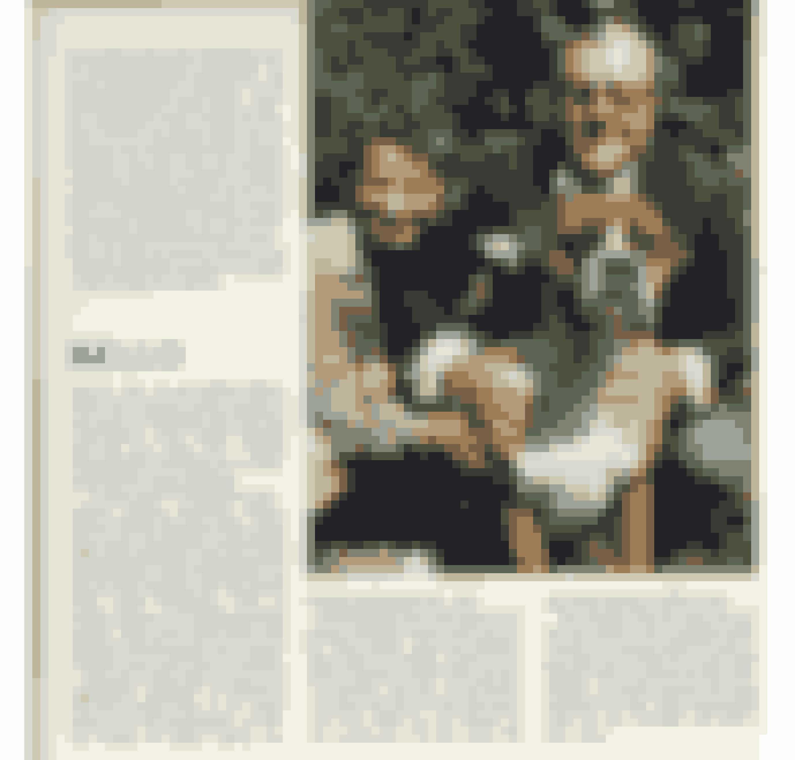 I 1982 udfordrede Familie Journal journalistikkens rammer ved at interviewe kendte menneskers hunde. For eksempel Poul Bundgaards bokser Bello, der fortæller, at han ikke kan døje at drikke vand af en skål. Han giver blot hals, og så kommer hans far straks og lukker op for vandhanen, så han kan få dejligt koldt vand.