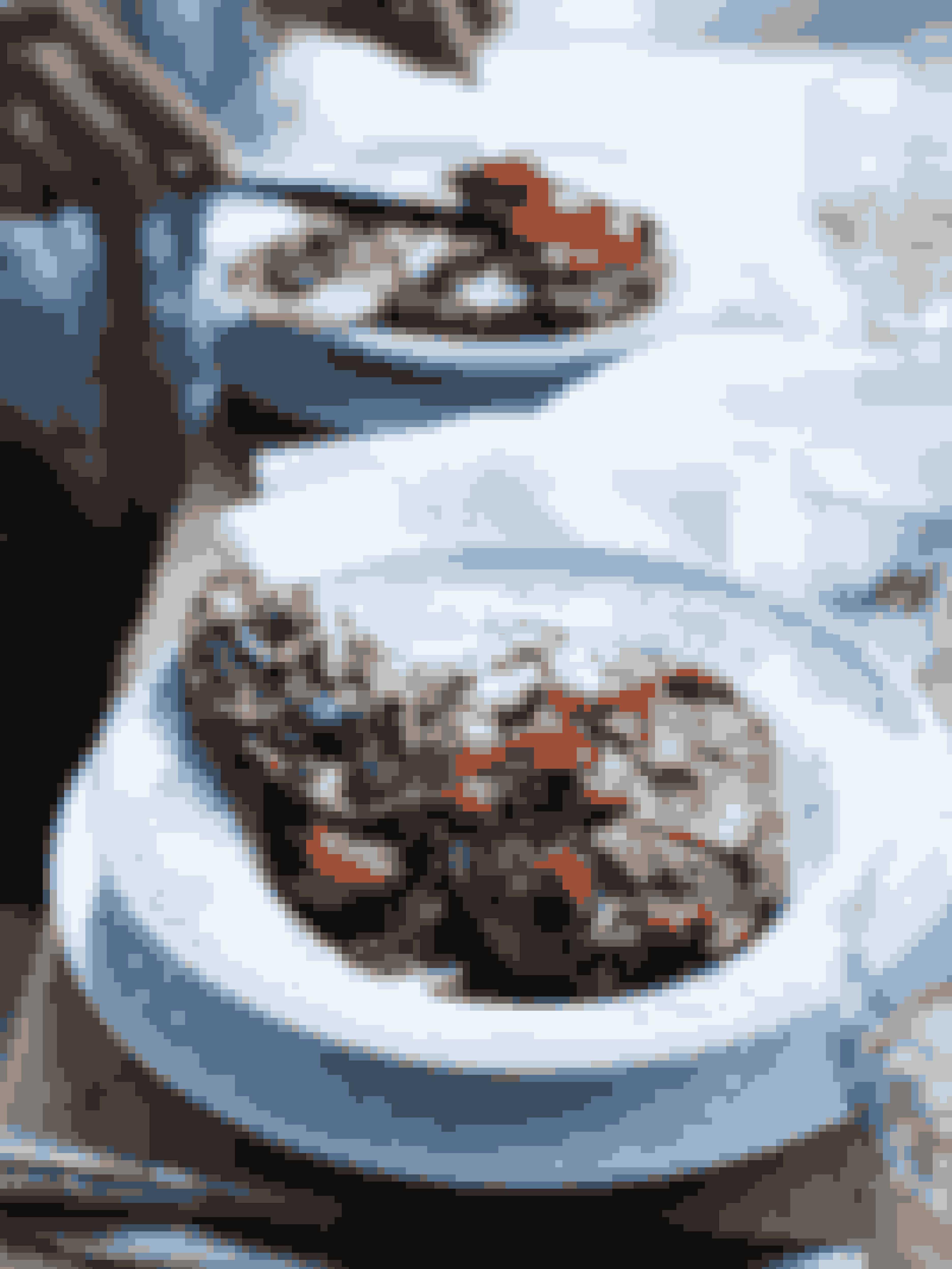 Gryderetten: Ossobuco med ros og crostini med gremolataOssobuco smager, som om man har stået mange timer i køkkenet, men det tager faktisk kun en halv times tid at lave retten. Derfor er det helt perfekt gæstemad - især hvis du har mange gæster, for så kan du nemt servere retten i en buffet! Se opskriften her.