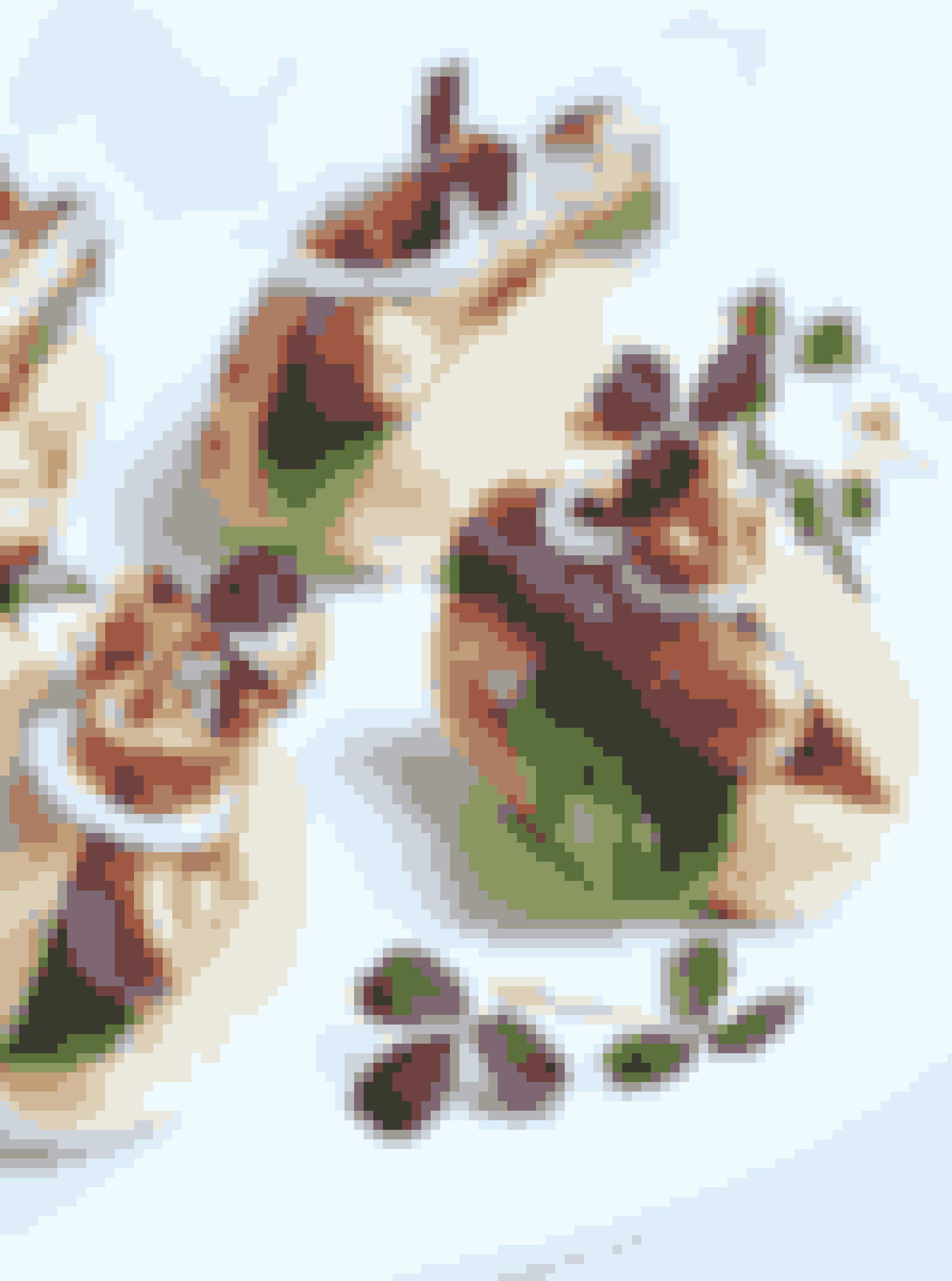 Fine små hotdogs med chili-aioli12-16 stkIndrømmet, det er måske lidt alternativt, men hop med på gourmet-fastfood-bølgen og servér mini-hotdogs for gæsterne som en sjov, fin og appetitlig forret. Måske den passer til dit tema, om en afslappet konfi? Se opskriften her!