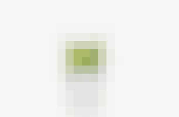 Denne juice indeholder et vælg af næringsstoffer, som alle arbejder flittigt sammen om at booste hele sundhedstilstanden i kroppen - både mentalt og fysisk.  Ingredienser: 2 grønne æbler 2 stilke selleri 1/3 økologisk citron med skræl ½ squash ½ agurk 1 broccoli stok Is og 2 spsk. Kvalitetsolie