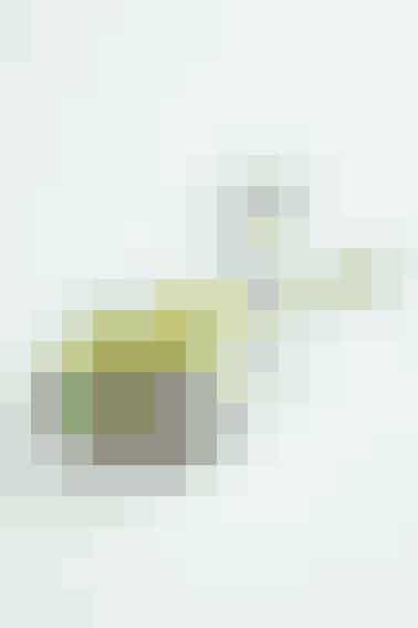 BLÅ OST MED VAGTELÆGBLOMME Karse  Rå vagtelæggeblomme  Groft salt Rødløg  Blåskimmelost  Pumpernikkel   Et glas Brøndums Snaps eller Brøndums Snaps Klar