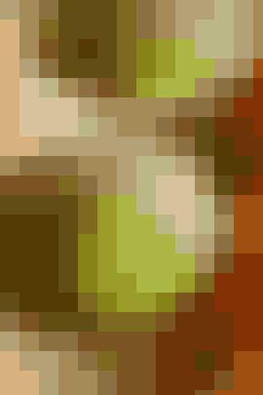 Når man forsøger sig med en detox-kur, er det meget vigtigt, at man drikker en masse væske. Grøn the kan være et godt valg, da det indeholder det, man kalder flavonoider. Det er en gruppe kemiske stoffer, der findes naturligt i blandt andet frugter, nødder, frø og teer. Disse flavonoider sætter farten op på leverens rensningsproces.På redaktionen er vi fx vilde med den grønne mathca-te fra danske Byoh - køb den HER.