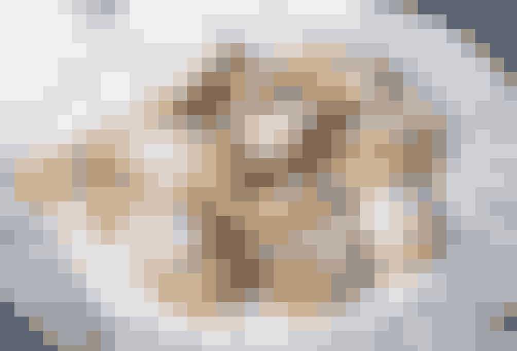 Madeleinekager er små muslingeskalsformede kager – super delikate til eftermiddagskaffen. Se opskriften her Køb forme til madeleinekager her