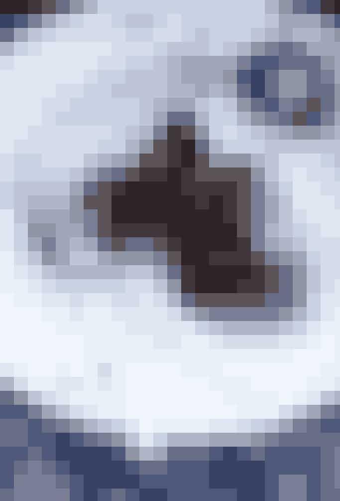 Molleux au chocolat er en fransk chokoladekage, der forener to fantastiske ting: den er sprød udenpå og flydende indeni. Få opskriften her