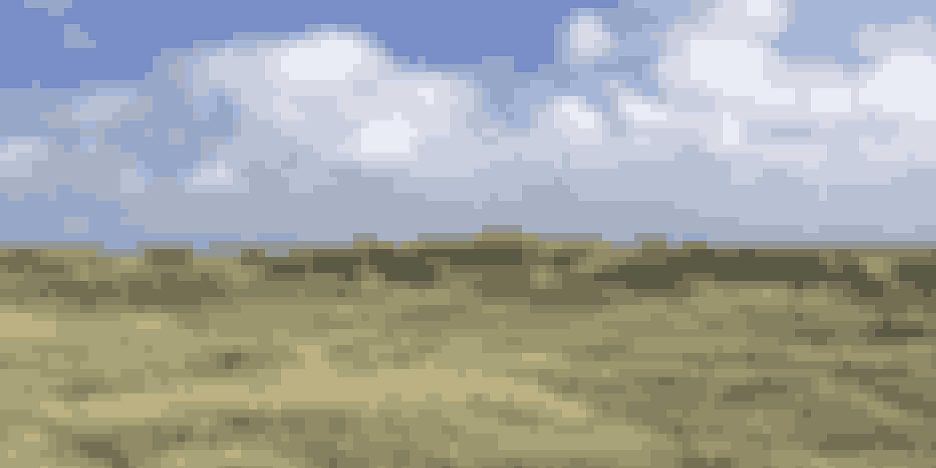 Blæsten er ofte kraftfuld på vestkysten, og i Hvide Sande ligger marehalmen blæst bagover i det idylliske sandede landskab.
