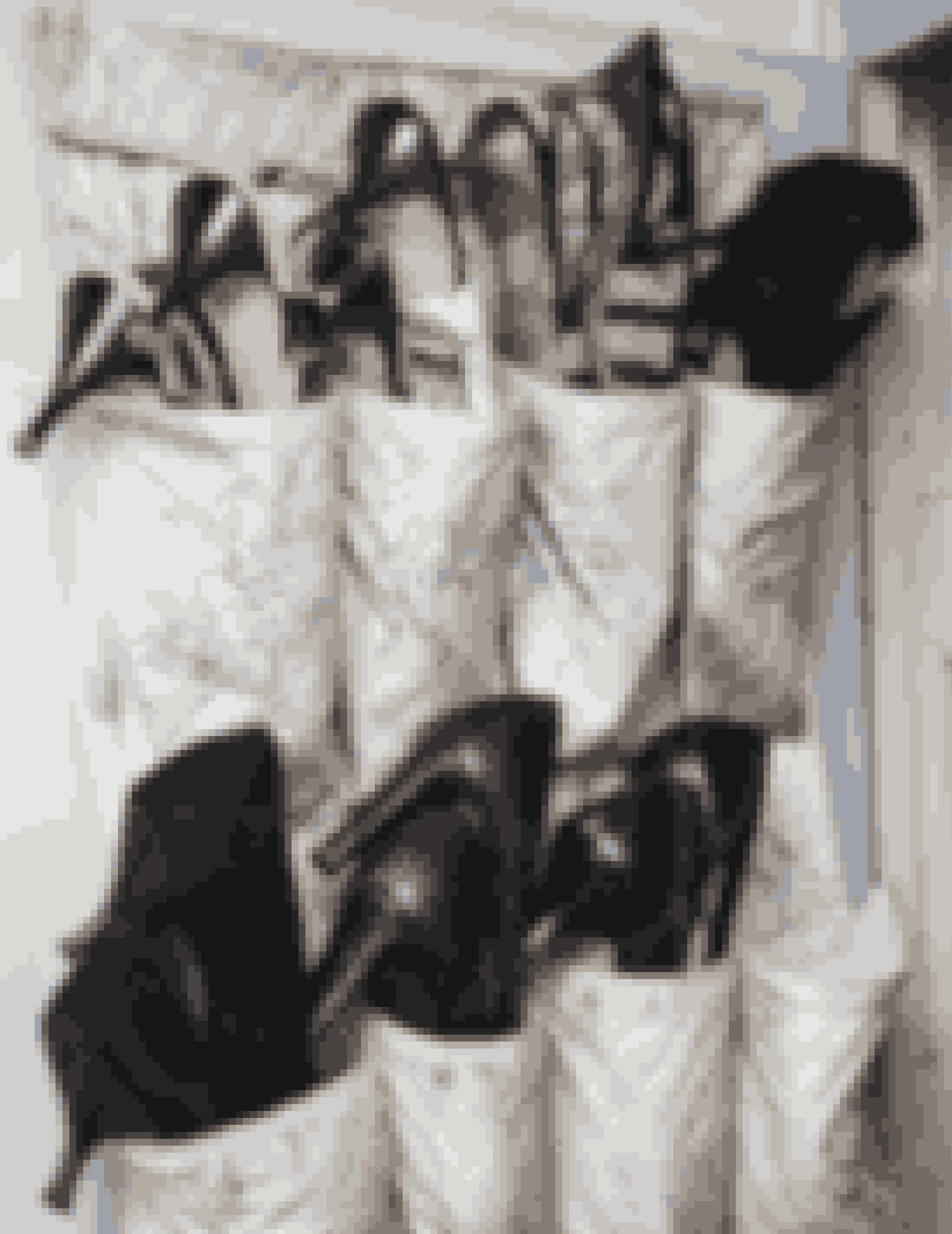 Lotte Freddies garderobe kræver masser af plads. Skoene opbevarer hun smart i hver deres lomme.